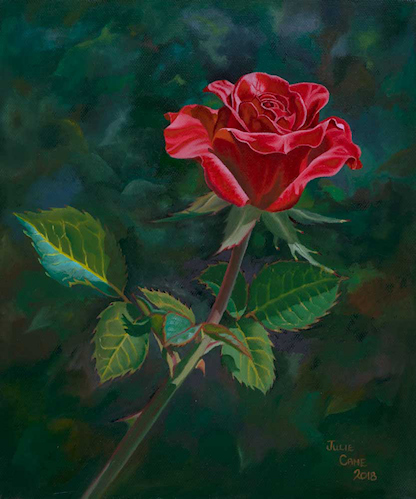 A Single Red Rose Montville Art Gallery